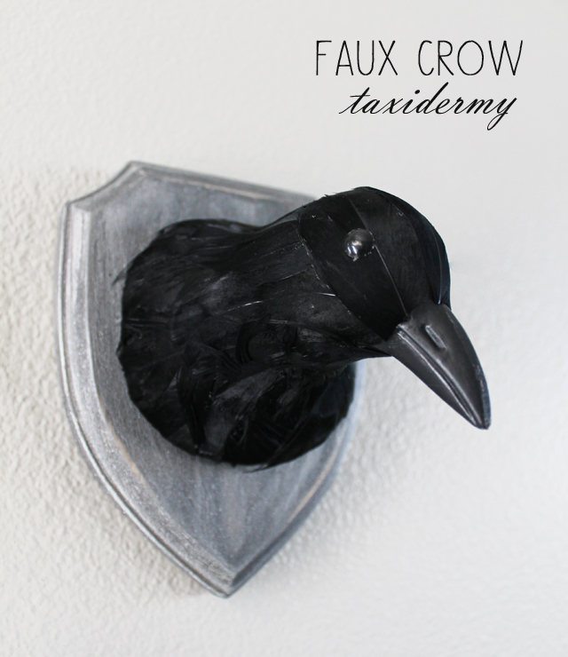 faux crow taxidermy