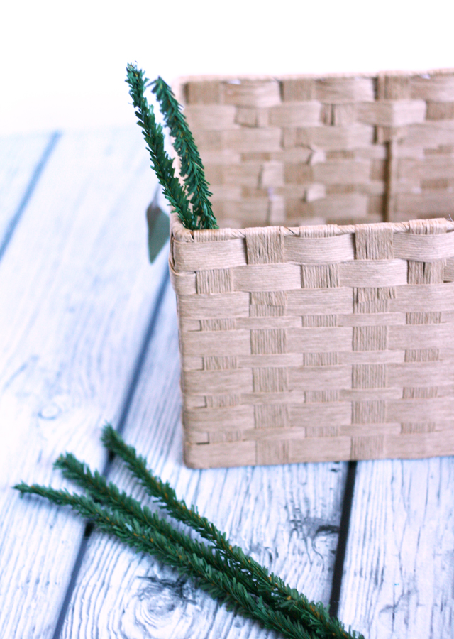 use-wired-pine-stems